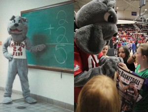 Bulldog mascot (left), 1985 Bulldog mascot (right), 2015